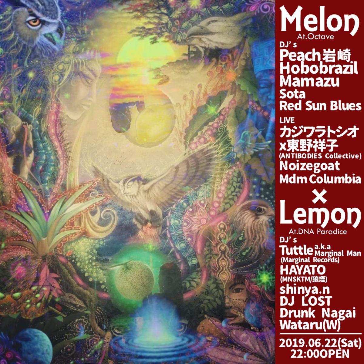 melon/lemon